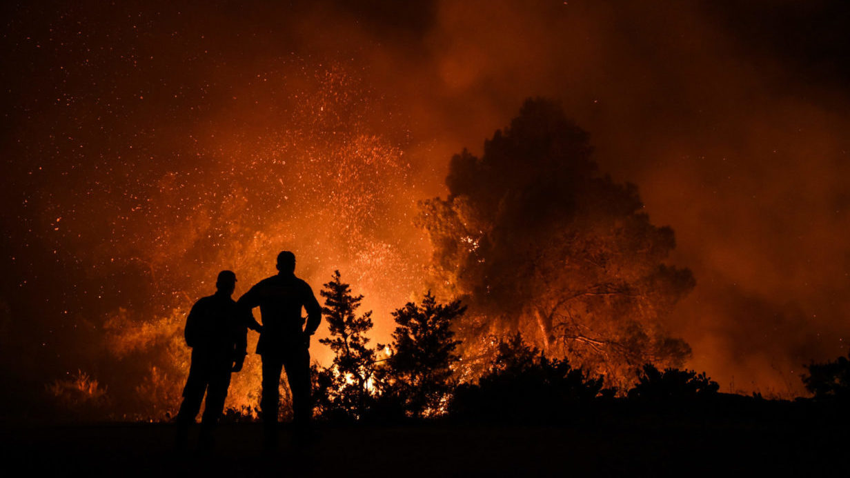 image of forest fires